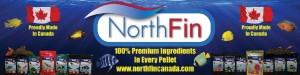 NorthFin Poster Final 1